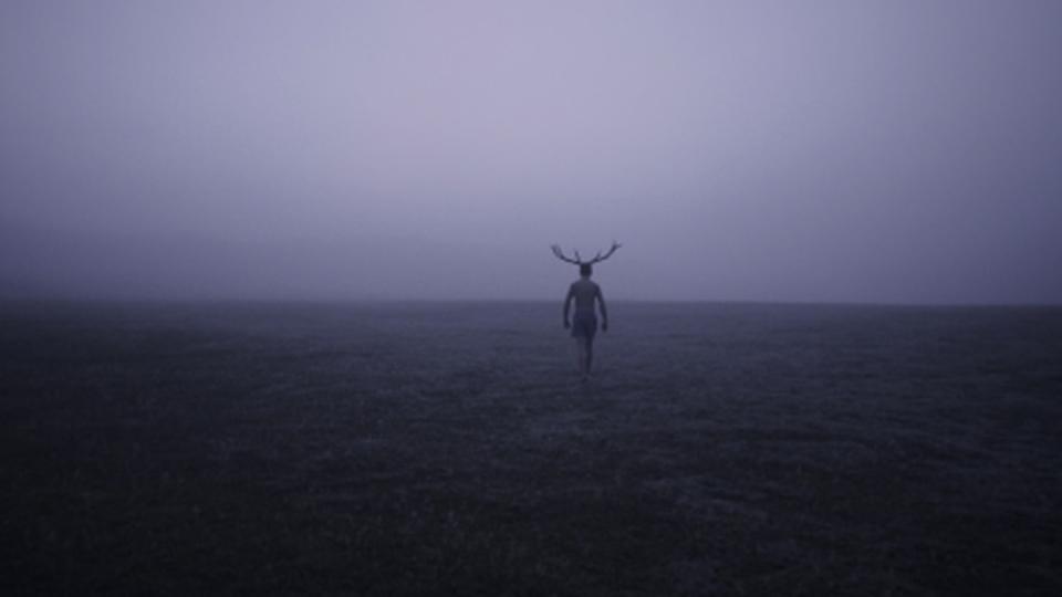 Deer Boy [PL/BE/CRO]