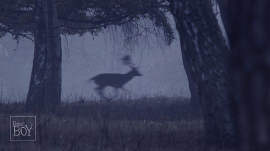 DeerBoy_fotos1_Page_3