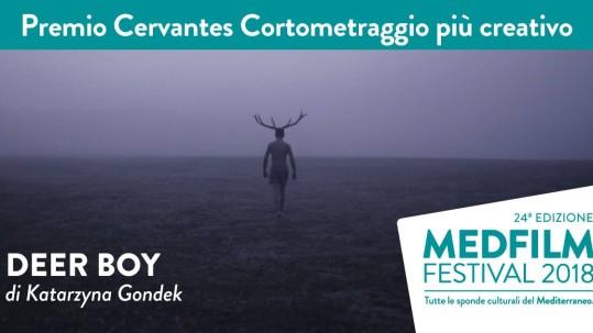 DeerBoy_award